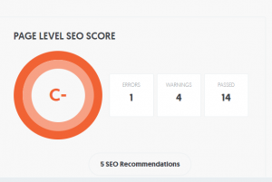 Screen capture of SEO Score for our test website