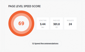 screen capture of website seo speed analysis