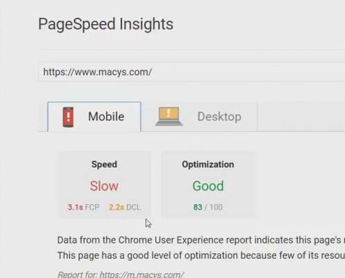screen capture of macys.com in pagespeed insights