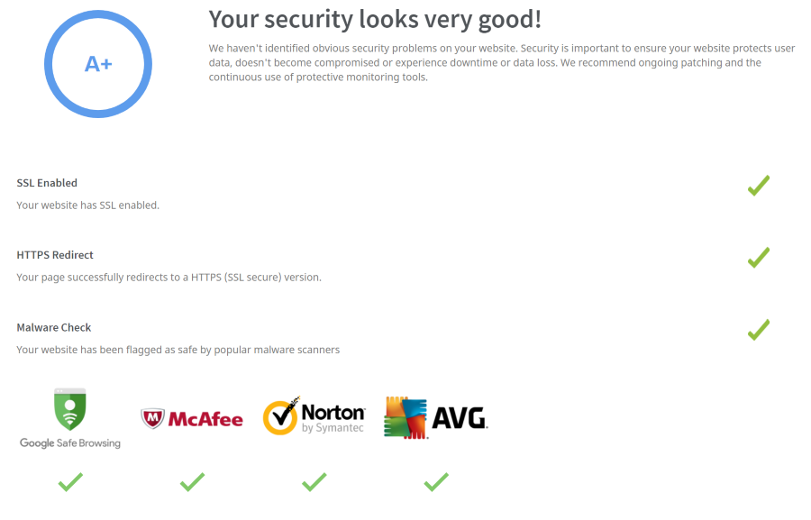 screen capture of seoptimer review of site security