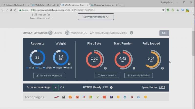 screen capture of SEO speed metrics