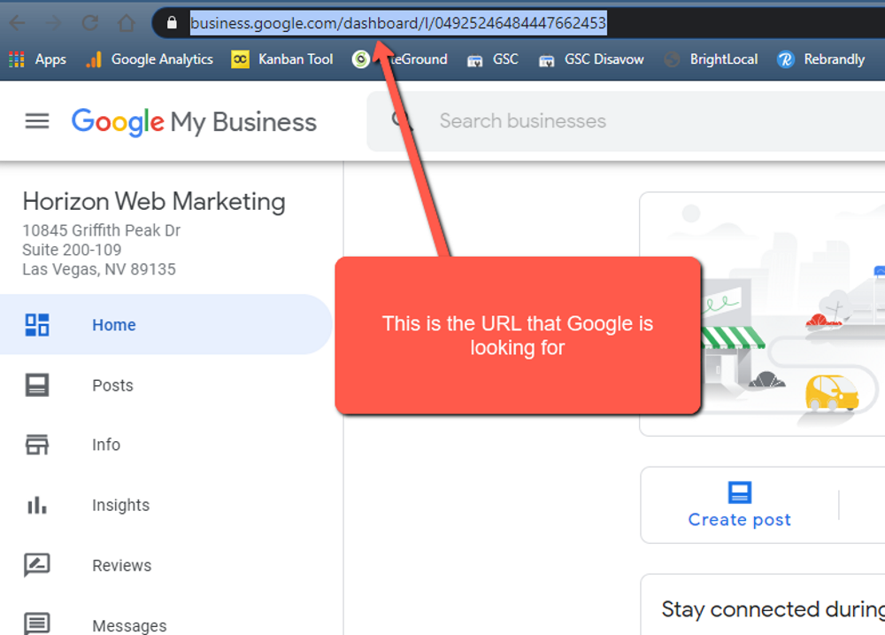 example of the Google My Business Dashboard URL